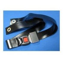 PARSONS BIOSAFE WHEELCHAIR BELT - 48 in (122 cm)