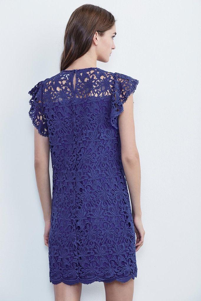 Velvet Women Ally Lace Cap Sleeve Dress