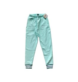 Champion Champion RW Yarn Dye Joggers waterfall Green