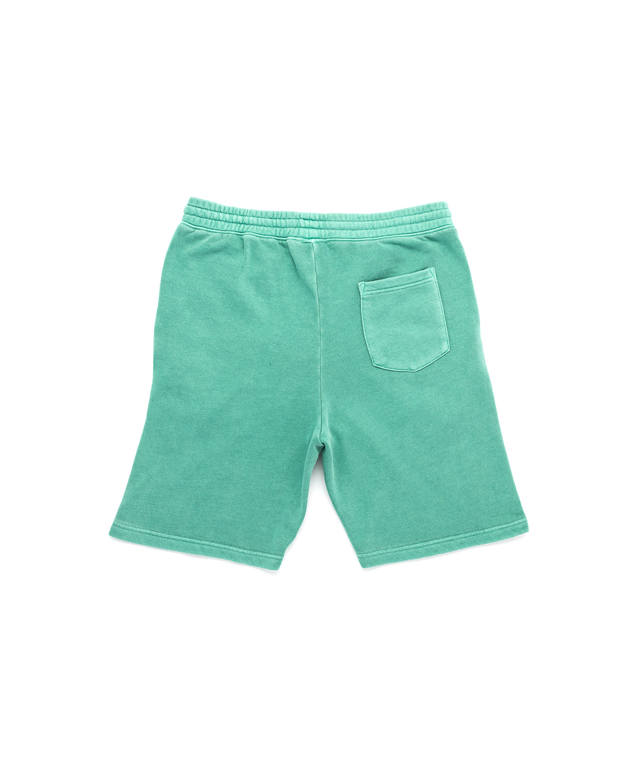 Jugrnaut Jugrnaut Bold Cold Shorts Mint