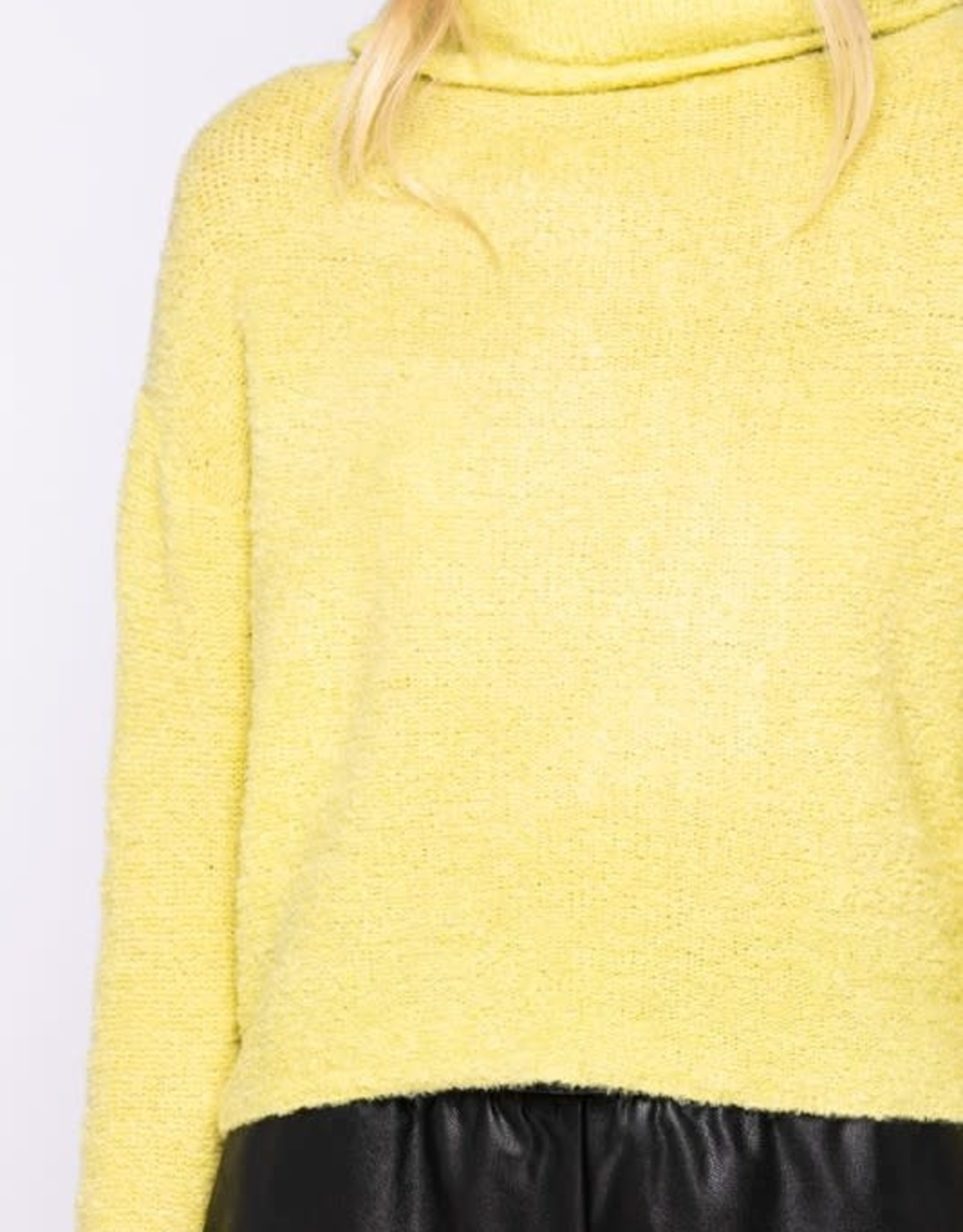 Hint of Lime Sweater