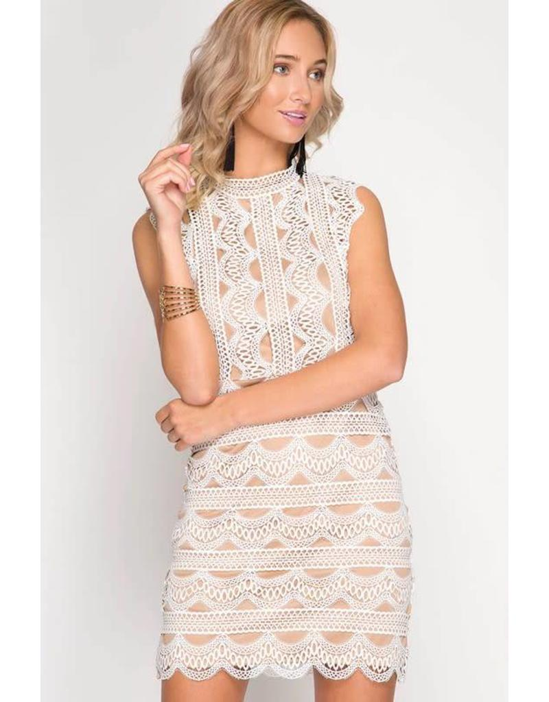 Delicate Lace Dress