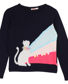 FW19 Pull Chat Sequins BillieBlush - Winter Cat Sequin Sweater