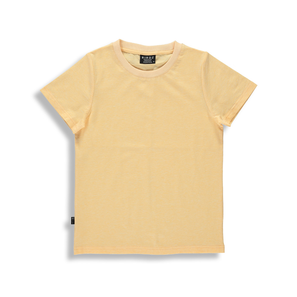 Birdz SS21 T-SHIRT MANCHES COURTE SORANGE/BASIC T-SHIRT SHORT SLEEVES ORANGE de BIRDZ