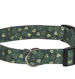 COLLARS & LEASHES CLEARANCE - GOLD SHAMROCK COLLAR - FINAL SALE