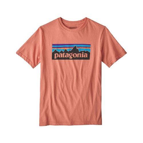 Patagonia Boy's P-6 Logo Organic T-Shirt