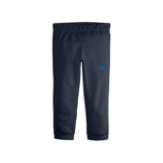 The North Face Toddler Surgent Pant