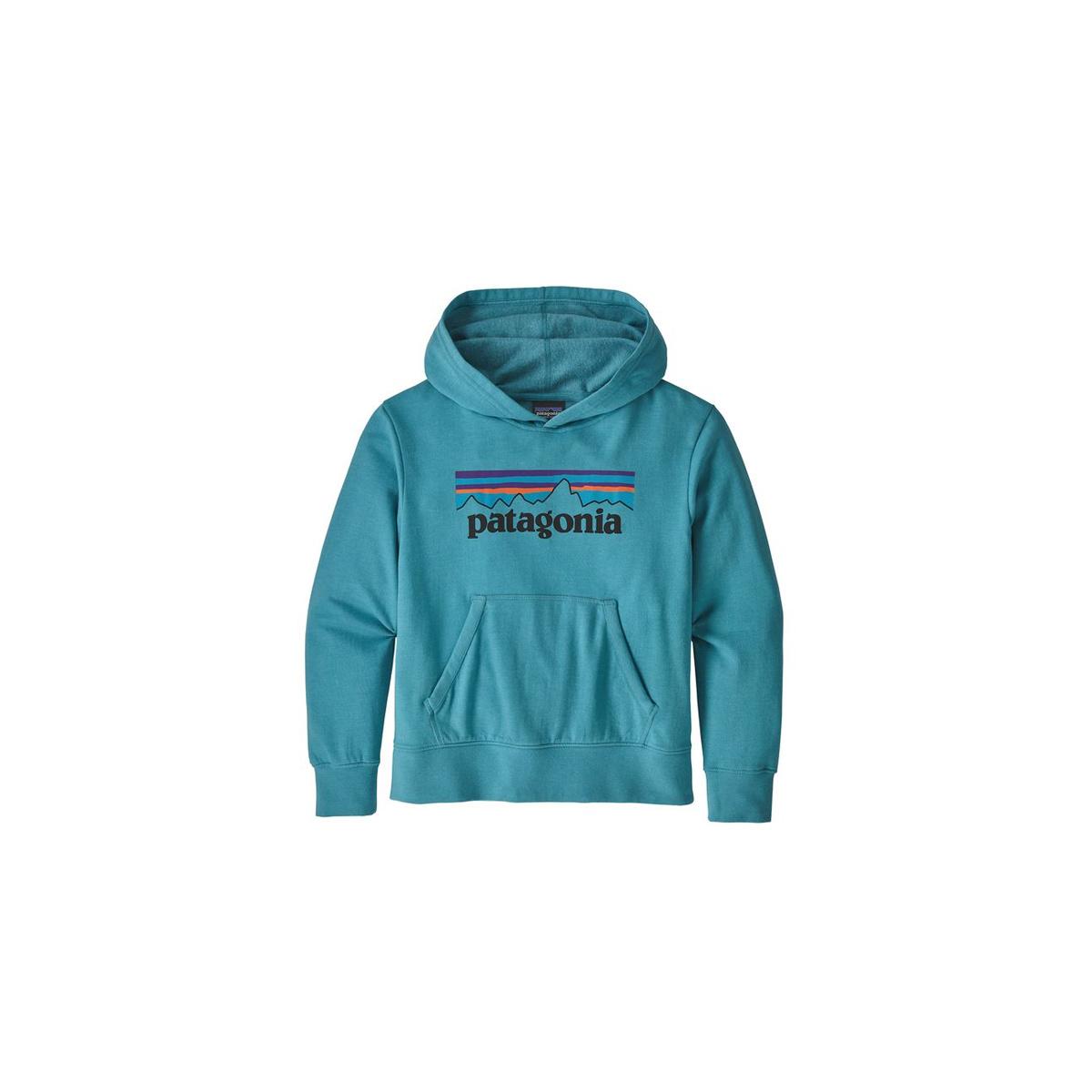 Patagonia Kid's Light Weight Graphic Hoody Sweatshirt