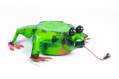 Frog with Fly