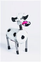 Mini Tin Crazy Cow