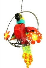 """Short Tail Macaw on Ring 19"""" H x 20"""" L"""