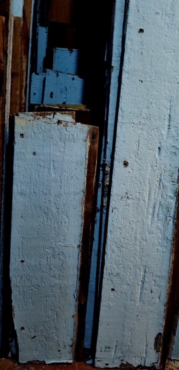 Blue Pecky Cypress