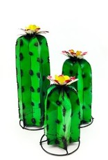 "RCY Cactus MD 19""H x 8""W"