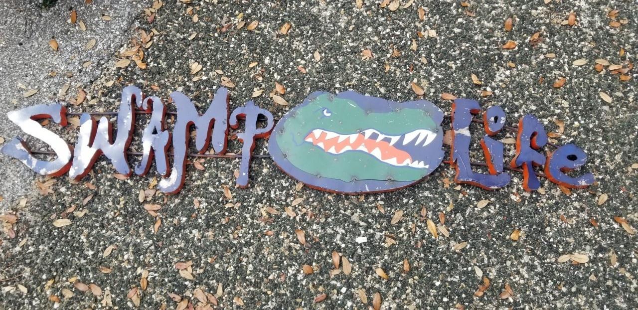 Gators Swamp Life