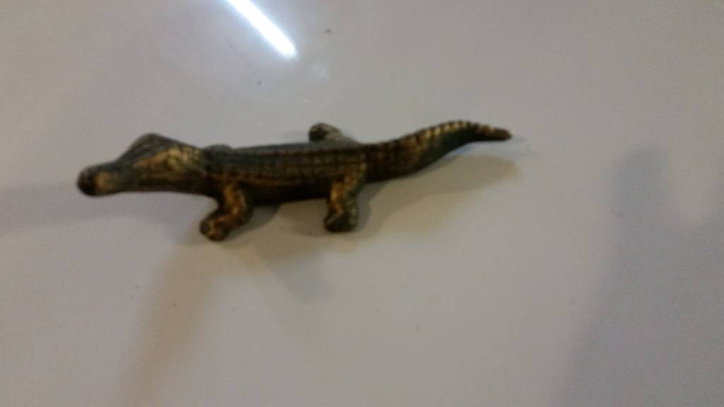 Medium Iron Green Alligator