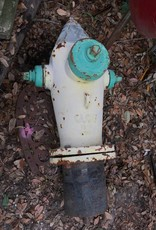Fire Hydrant LG