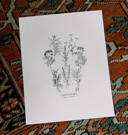 Rachael Sinclair Botanical Art Print