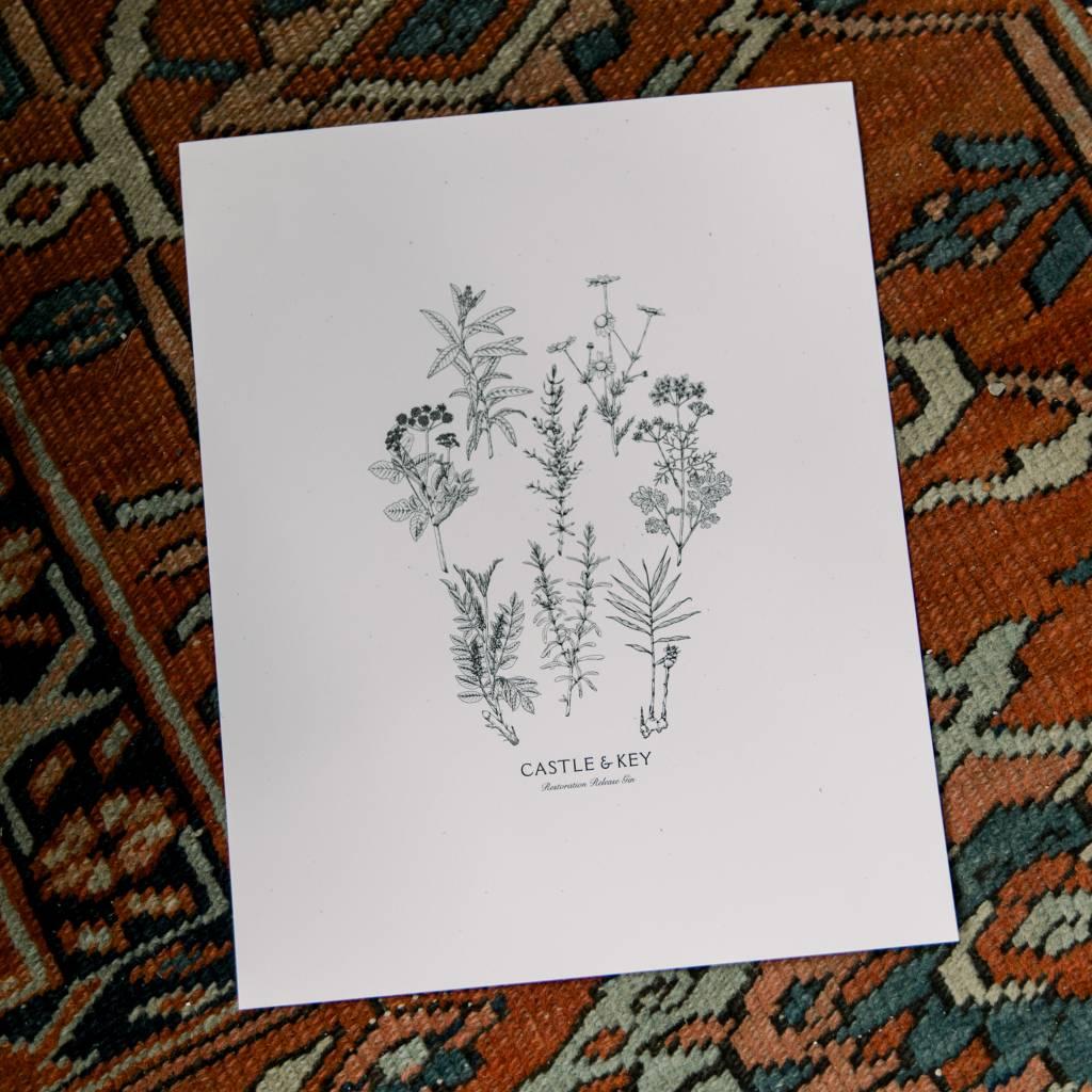 Rachael Sinclair Botanical Art Print
