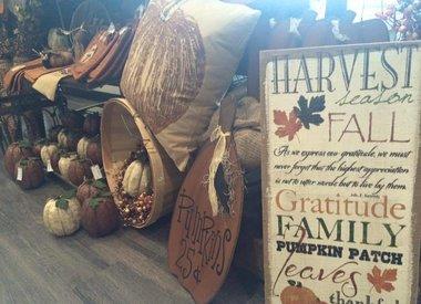 Fall/Harvest