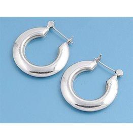 Horseshoe Hoop Earrings
