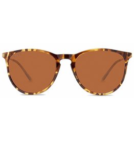 Abaco Polarized Piper Tortoise/Brown