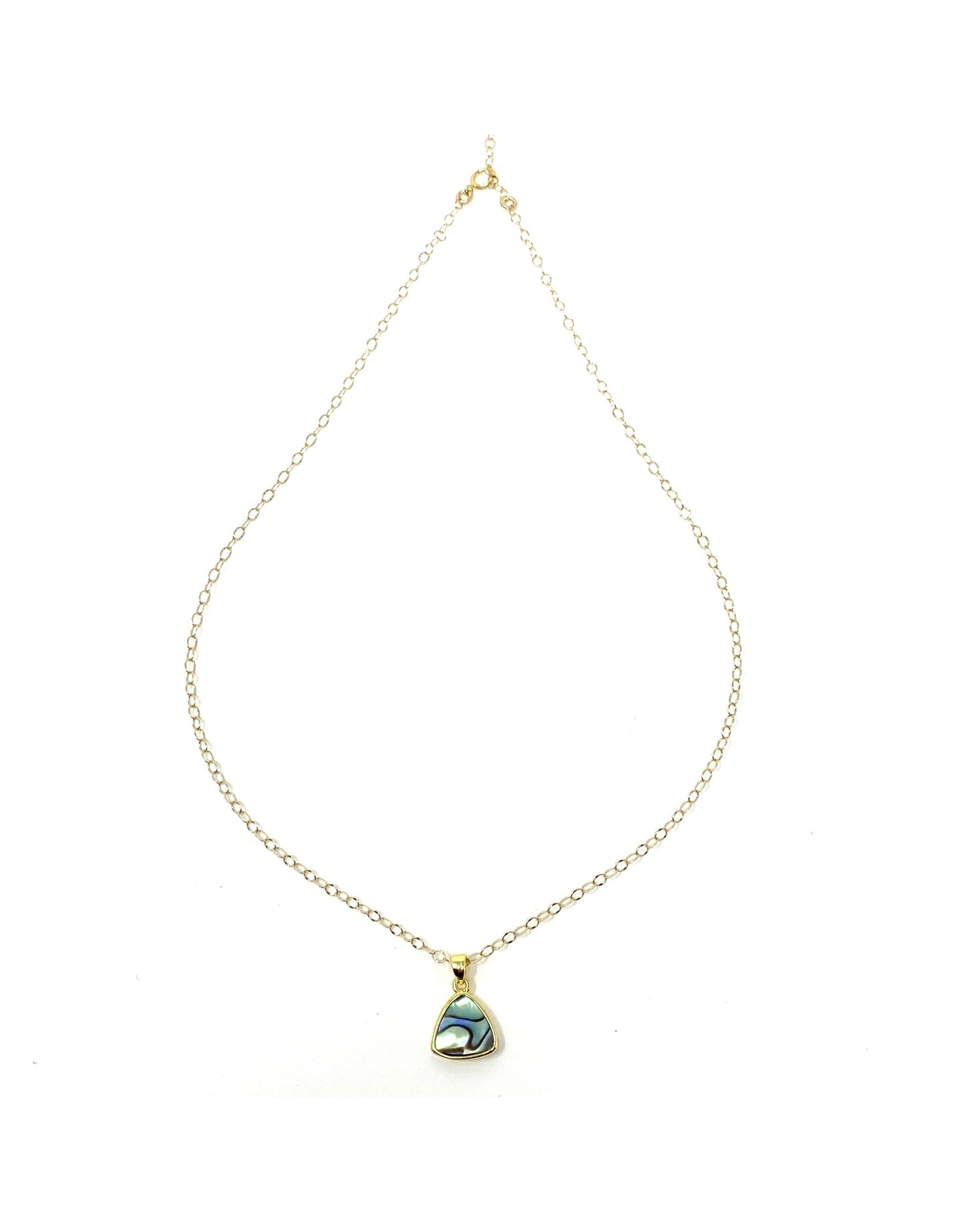 Abalone Charm on Gold Filled Chain