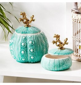 Turquoise Sea Urchin Trinket Box - Large