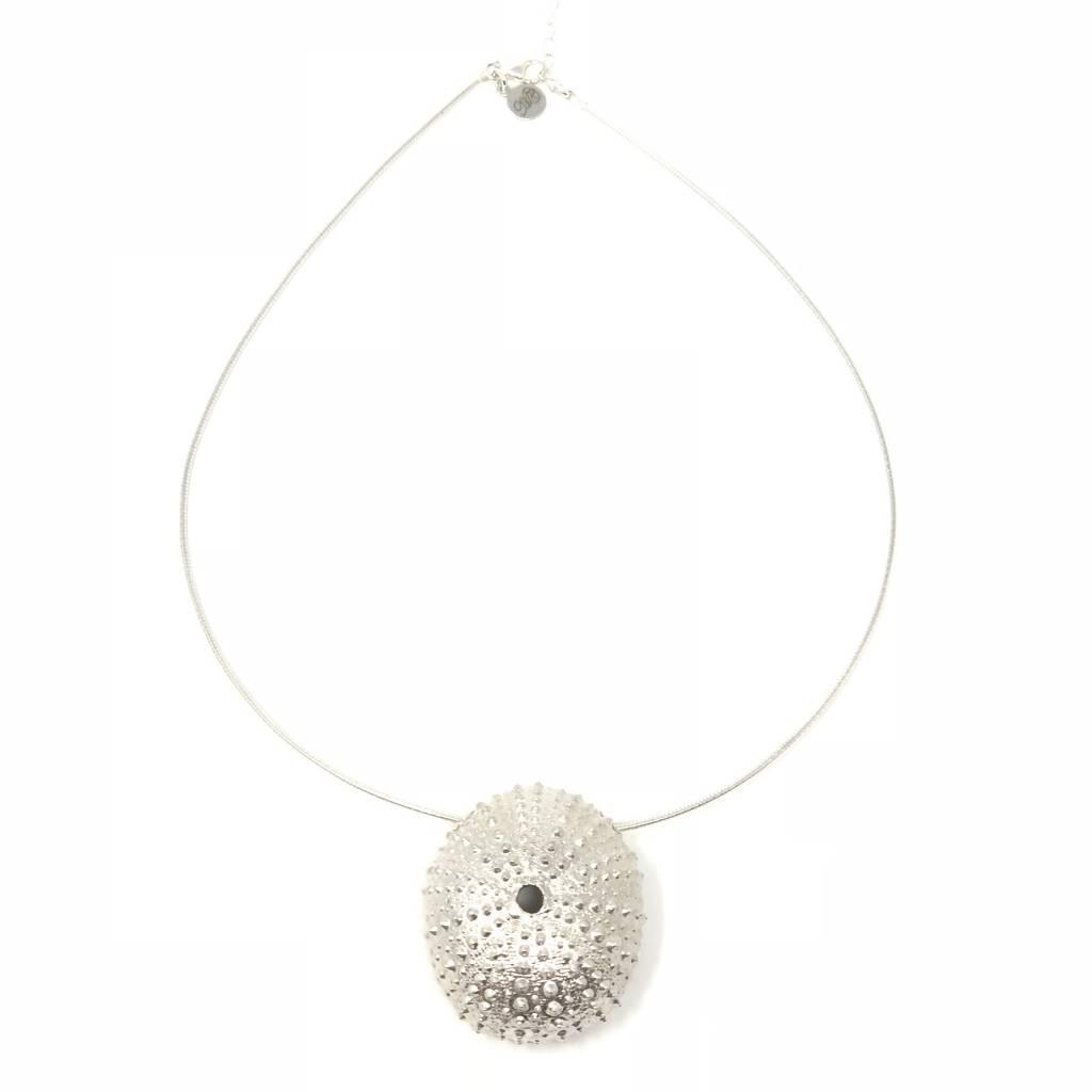 Sea Urchin on Omega