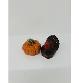 Vintage Turkey and Pumpkin Salt & Pepper Shaker Set