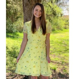 Easy to See Dress