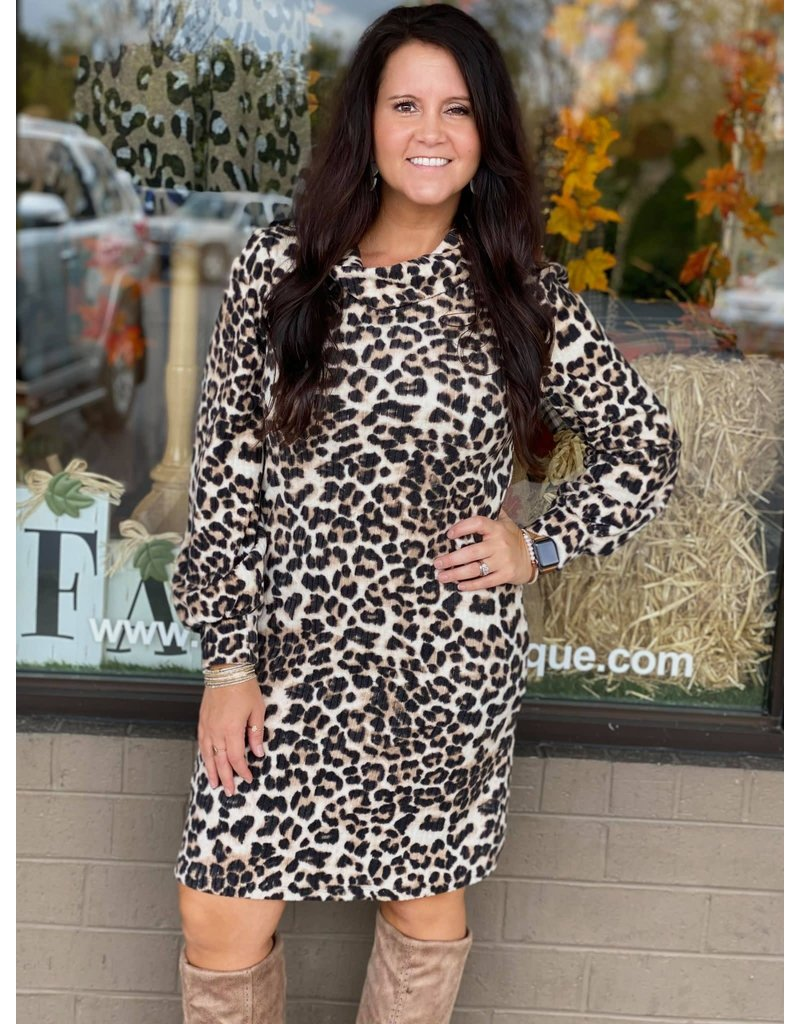 Shape of You Dress Curvy