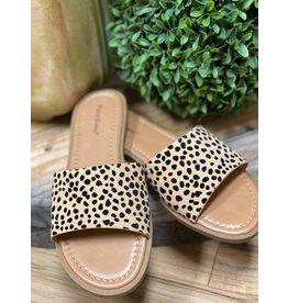 Take a Walk Sandals-Cheet