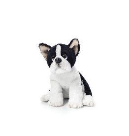 Boston Terrier Beanbag