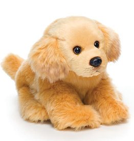 Golden Retriever Small