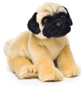 Pug Small