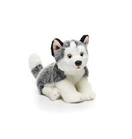 Husky Small