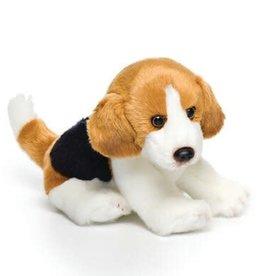 Beagle Small