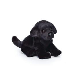 Black Labrador Small