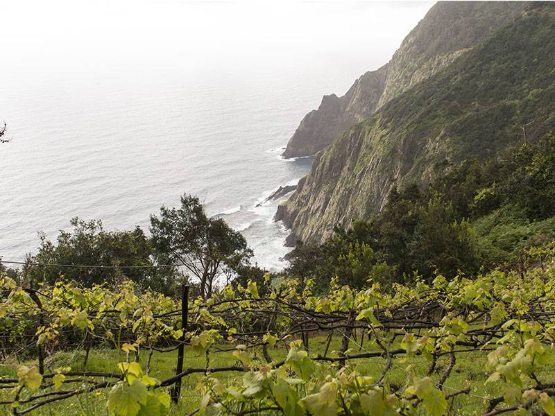Madeira – the wine of the Founding Fathers