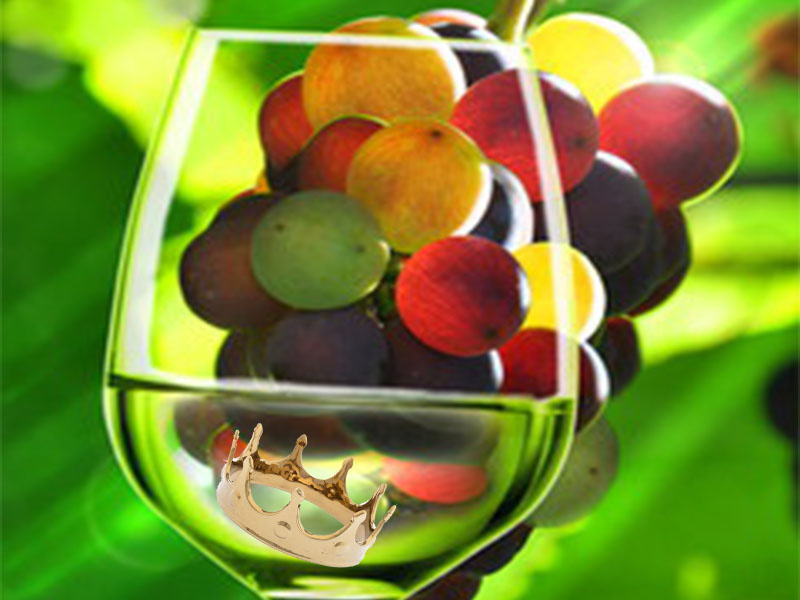 Noble Grapes, The White Varieties