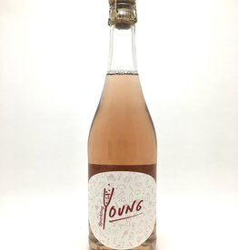 Steininger Kamptal Young Rosé NV