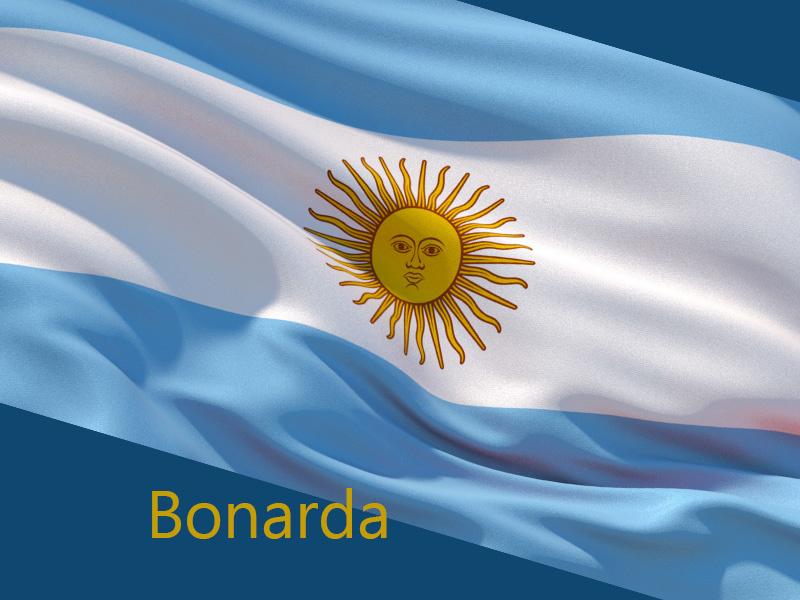 Bonarda: Argentina's Second Most Planted Grape