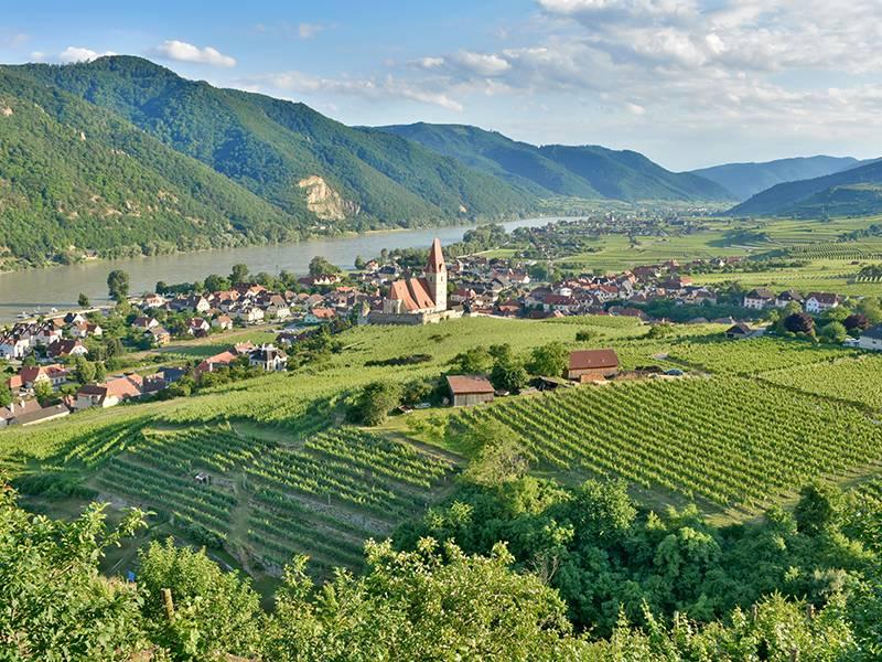 ABCs of Austrian Wine