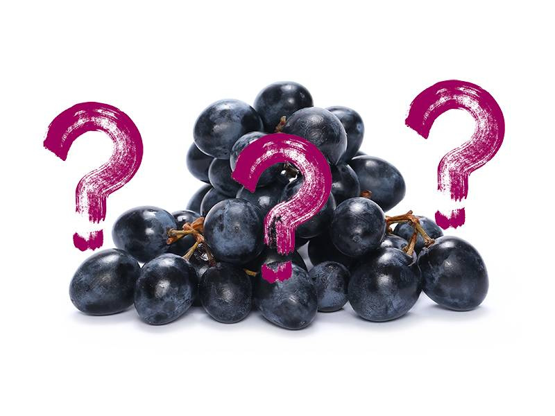 What's the Grape?