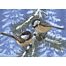 ROYAL & LANGNICKEL PAINT BY NUMBERS PINE BIRDS