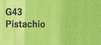 Copic COPIC SKETCH G43 PISTACHIO