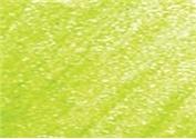 DERWENT DERWENT COLOURSOFT PENCIL LIGHT GREEN C440