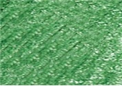 DERWENT DERWENT COLOURSOFT PENCIL MID GREEN C400