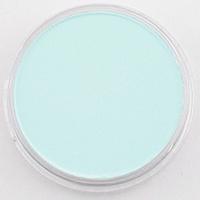 Pan Pastel PAN PASTEL PHTHALO GREEN TINT 620.8