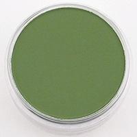 Pan Pastel PAN PASTEL CHROME OXIDE GREEN SHADE 660.3